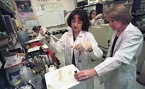 Anthrax Lab Houston