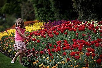 April in bloom