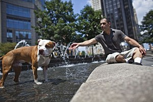 Heat Wave Brings Temperatures Into Upper 90's In New York City