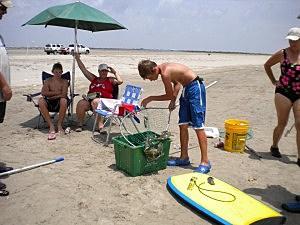 Photo of boy crabbing