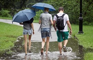 walking with umbrellas pic