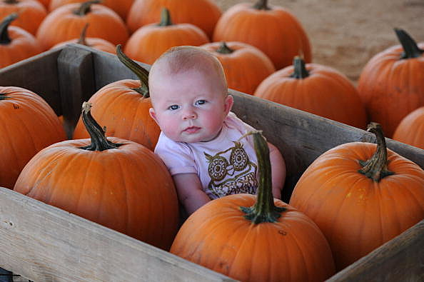 Baby In A Pumpkin Patch