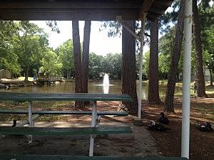 Veteran's Park 1