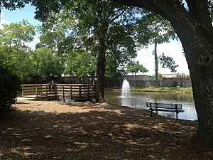 Veteran's Park 6
