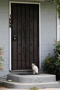 front door with burglar bars