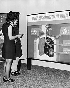 A Smoker's Lung