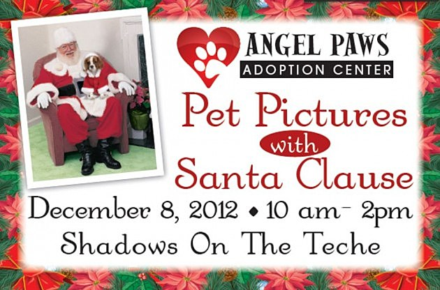 angel paws santa