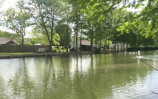 Pond Photo by John Falcon